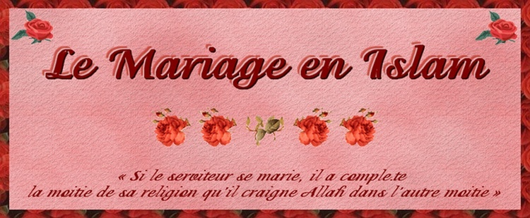 Cherche homme converti a l'islam pour mariage