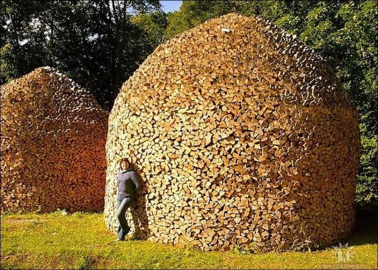 comment bien ranger son bois pour l'hiver