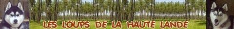 Les loups de la Haute Lande