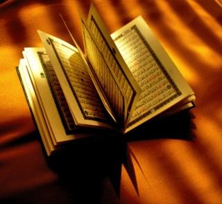 Bibliothèque des gens de la sunnah