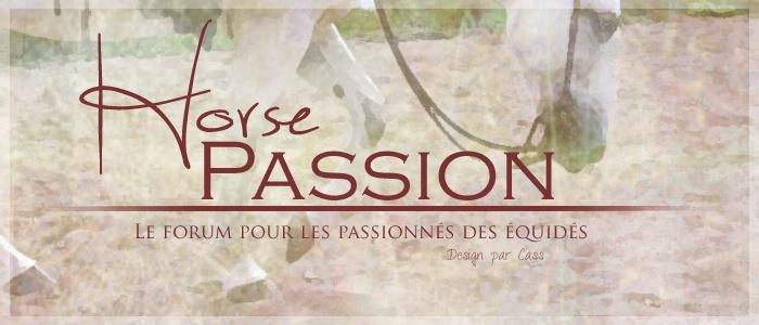 Horse passion