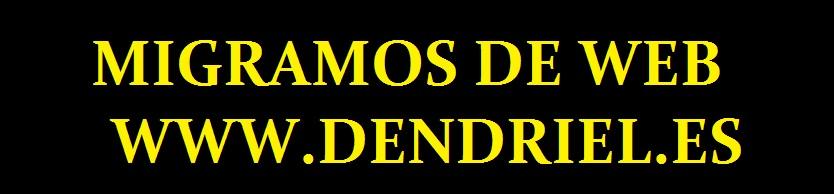 Dendriel SAMP ROL