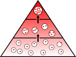 pirami10.png
